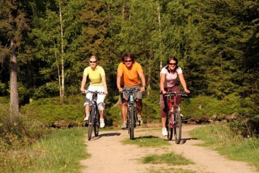 Mountainbikes in Harrachov